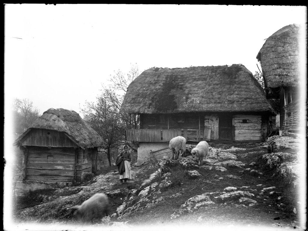 tradicijsko graditeljstvo